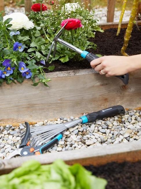 gereedschap om bloemenbollen te planten