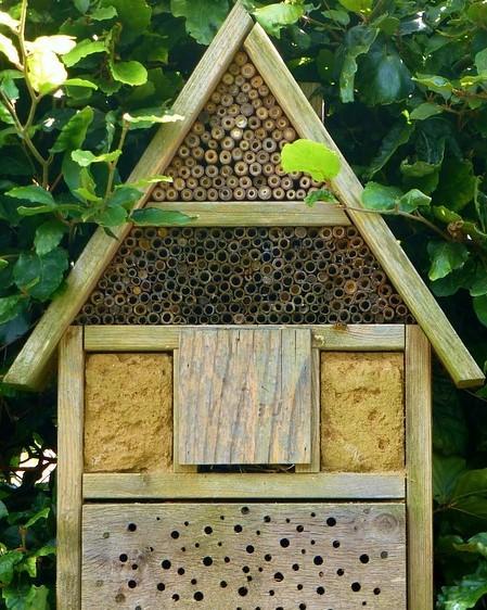 bijenhotel van hout