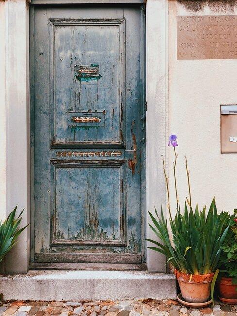 voordeur met keramieken plant