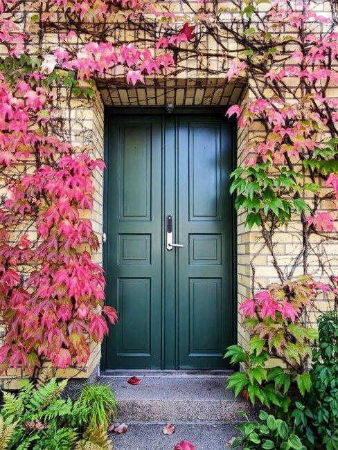 voordeur met roze klimplant
