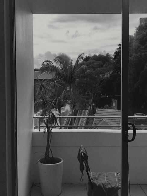 zwarte deur met witte plantenbak