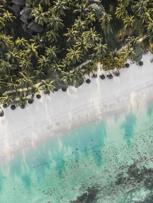 strand met bosrand