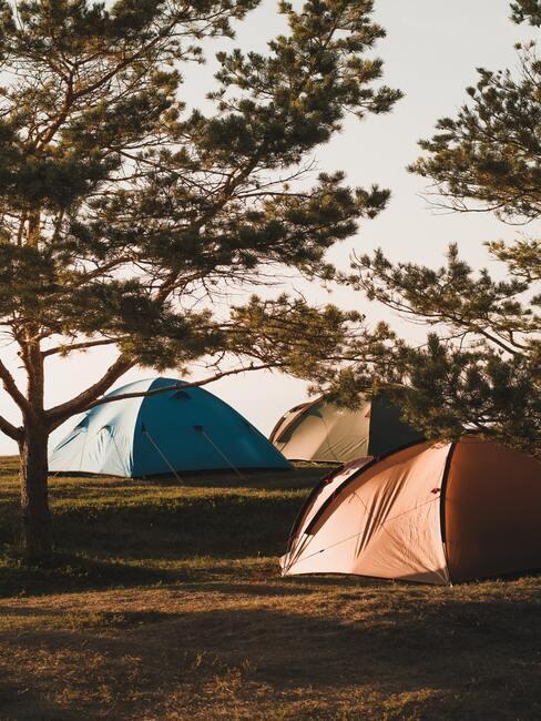 oranje en blauwe tent
