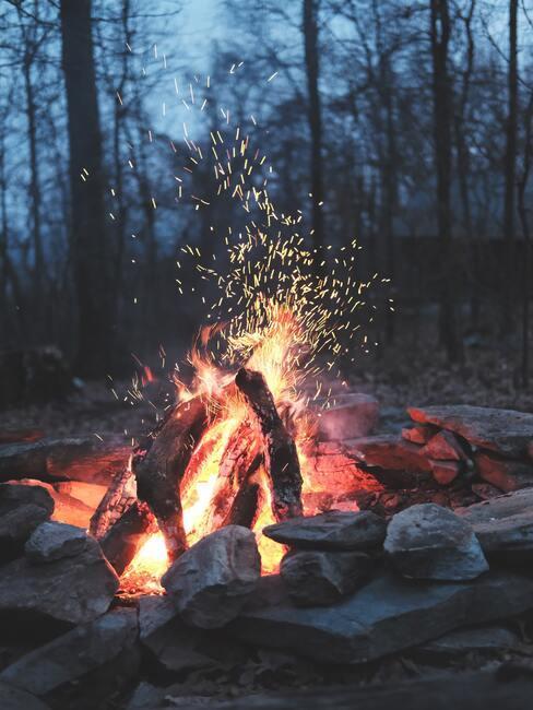 kampvuur in het bos