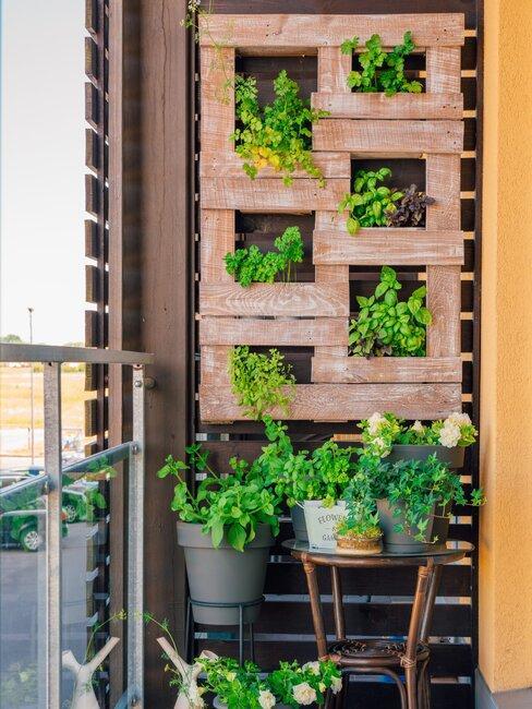 verticaal tuinieren met groene planten op een balkon