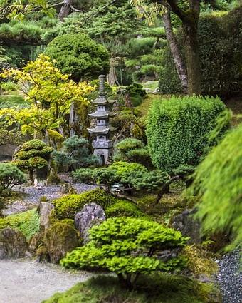 kleine japanse tuin