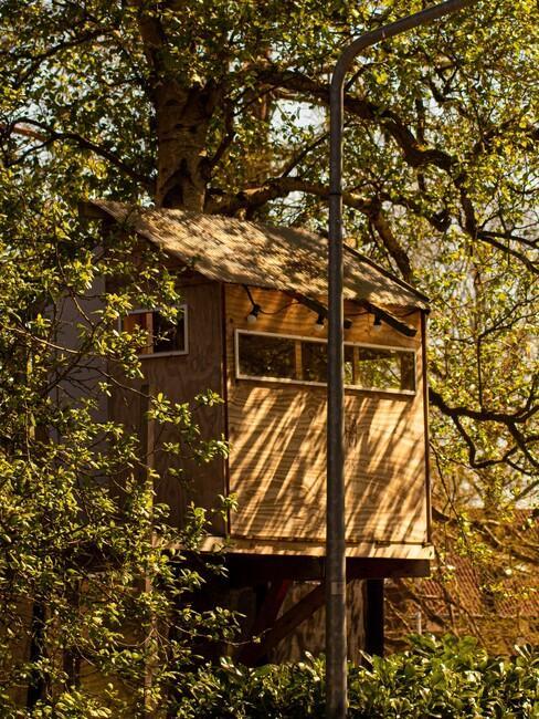 een bijzondere overnachting in een boomhut