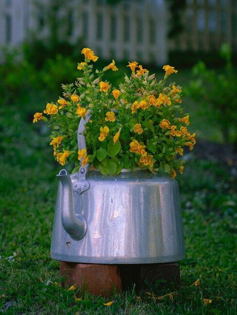 theepot met bloemen in gras