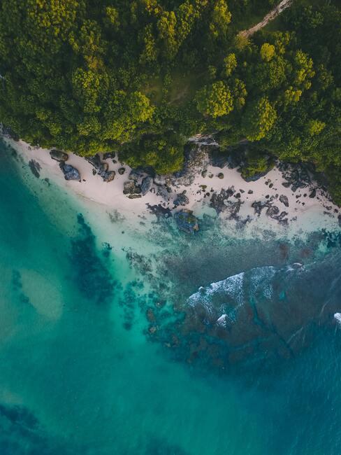 De Seychellen