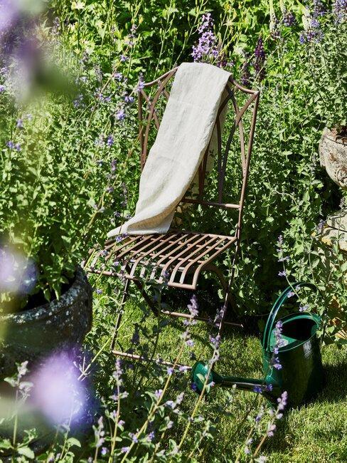 stoel in een tuin met een gieter en verschillende planten