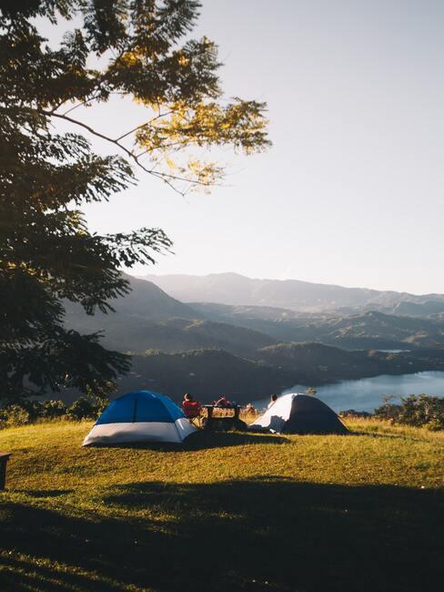 tenten op een grasveld