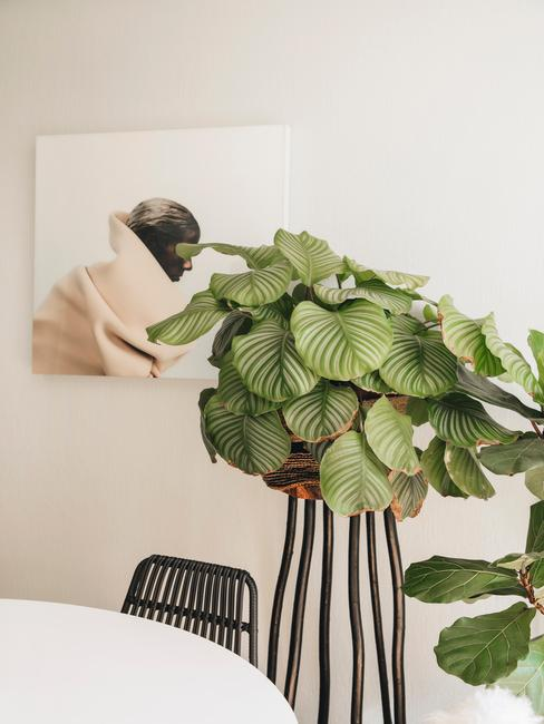 witte ronde tafel met zwarte stoel en plantenbak