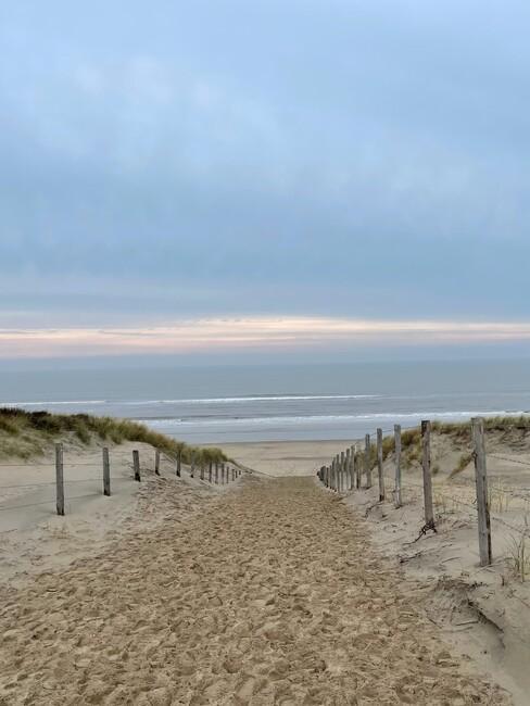 Nederlandse stranden