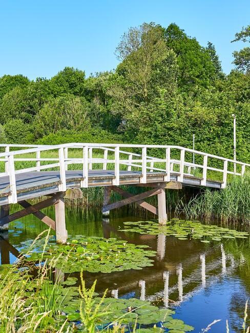 wit houten brug over een vijver