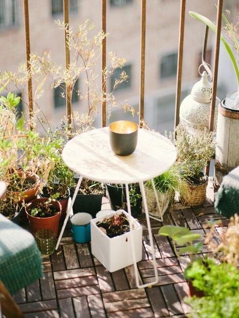 witte tafel met plantenbakken