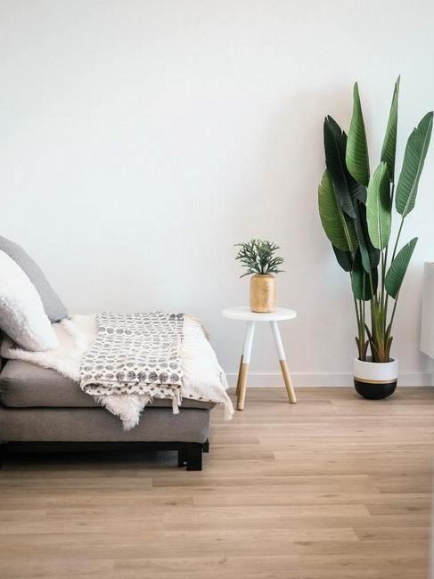 witte muur met grijze stoel en witte plantenbak