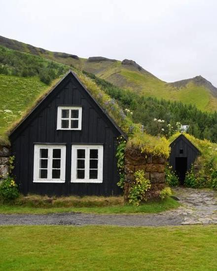 huis met groen dak
