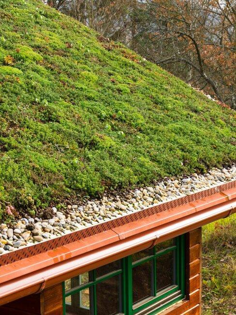 groen dak op houten huis