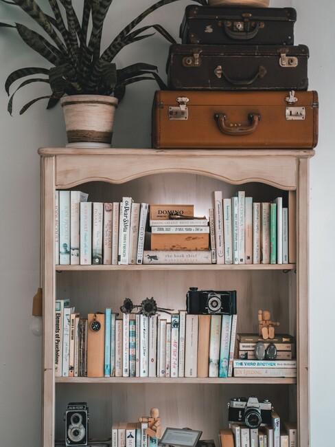 houten boekenkast met een plant
