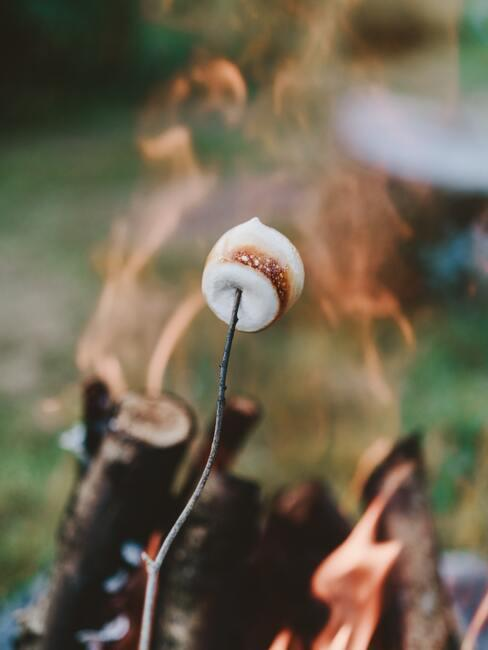 marshmellow barbecue