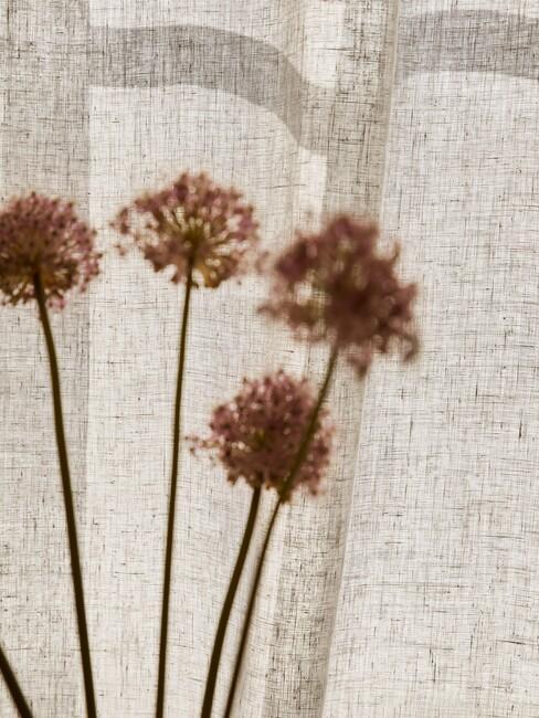 bloemen achter een beige linnen stof