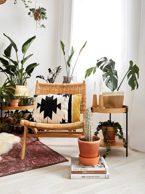 houten stoel met groene planten en een houten bijzettafel