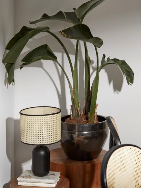koffiekleuren: donker houten pilaren met een zwarte plantenpotten