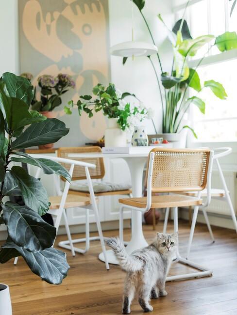 Witte ronde eettafel met houten stoelen