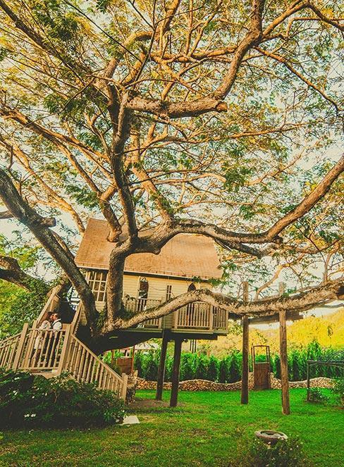 Domek na drzewie w ogrodzie na dużym drzewie