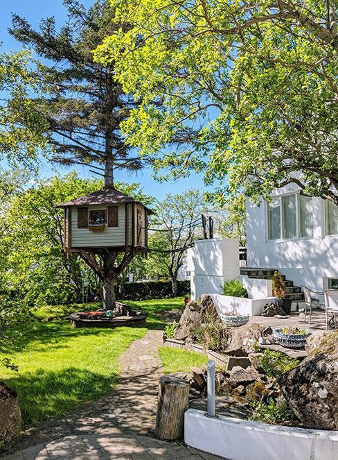 Domek na drzewie w ogrodzie obok białego domu