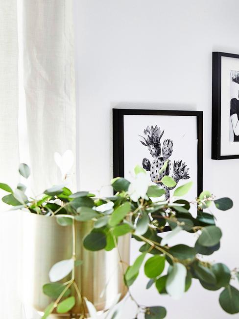 Pieniążek w złotej donicy na tle białej ściany z białoczarną grafiką kaktusa