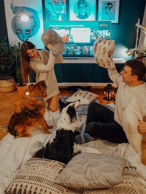 Autorzy bloga Wnętrzność w swoim mieszkaniu z psami