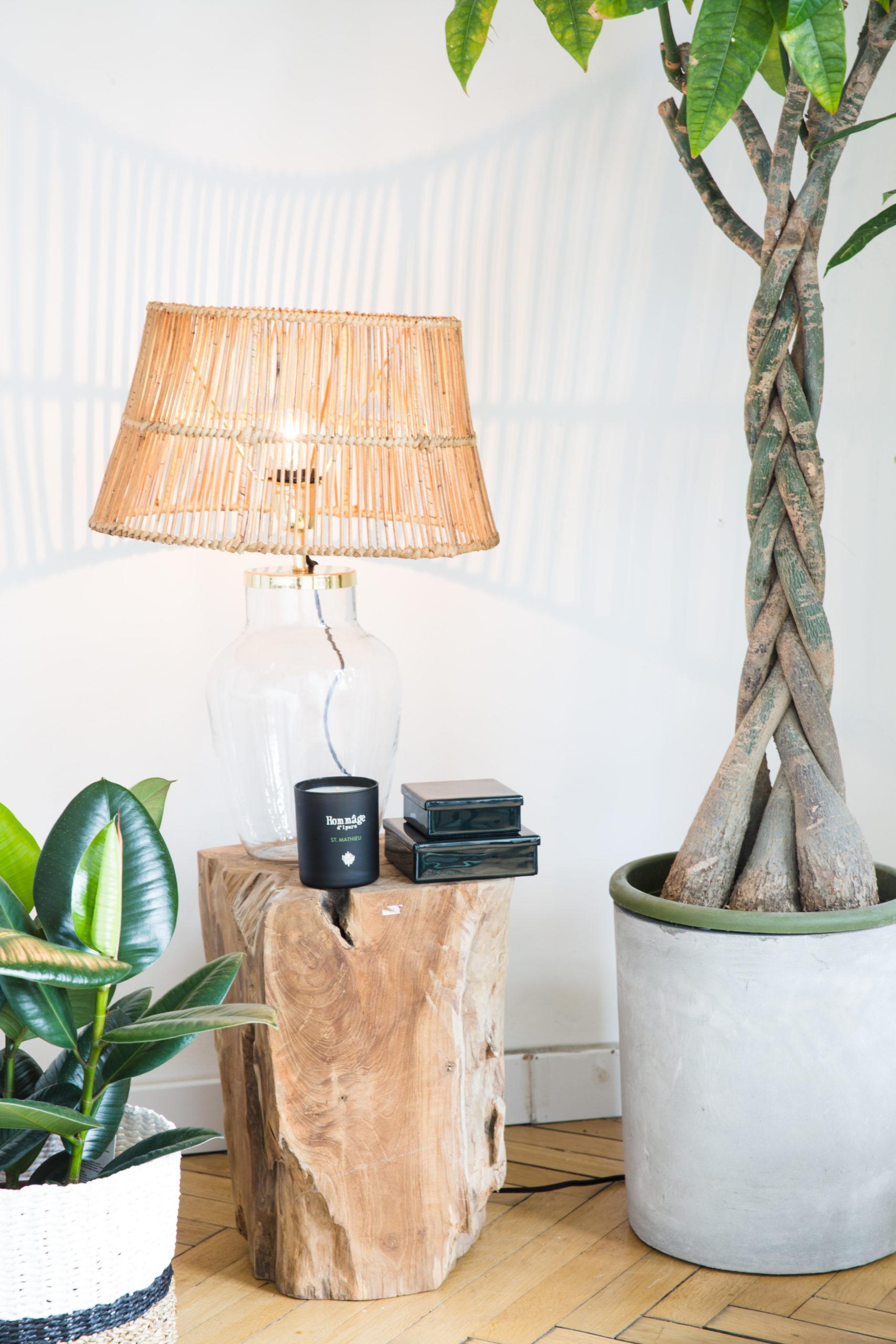 Fragment salonu ze stolikiem oraz rattanową lampą oraz rośliną