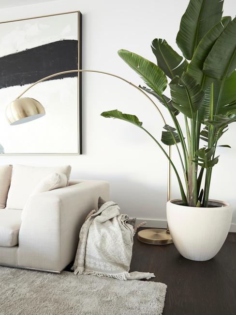 Salon w stylu minimalistycznym w obrazem na ścianie i rośliną na stoliku nocnym