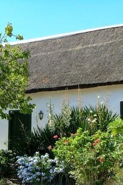 Skalniak złożony z roślin przed białym domem