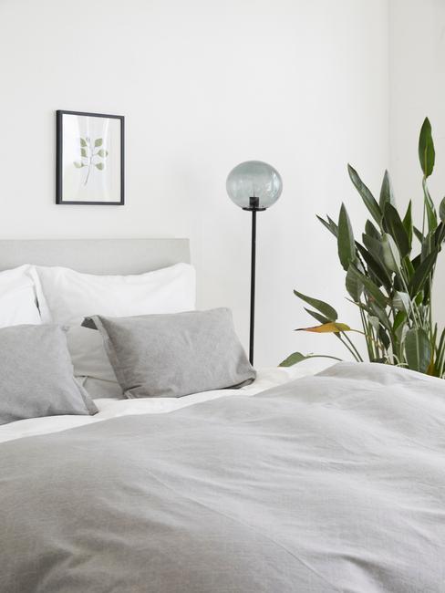 Zbliżenie na łóżko w sypialni z szarą pościelom, lampą oraz dużą rośliną doniczkową