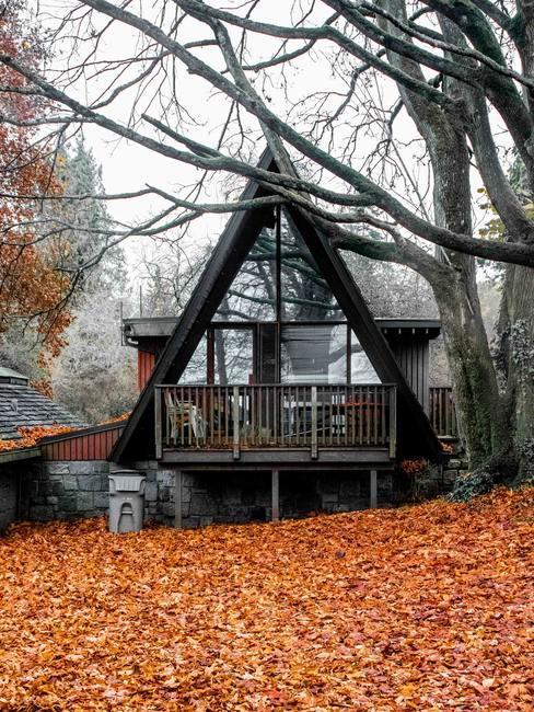 Dom w ciemnych odcieniach