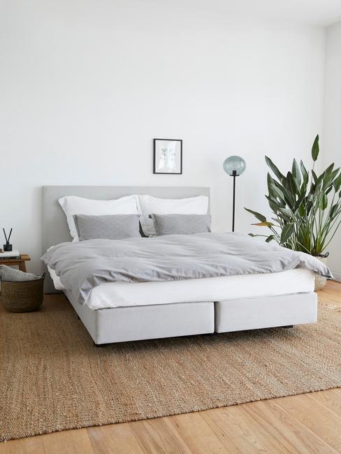 Wnętrze sypialni z dywanem z juty, dużą rośliną w rogu otaz dwuosobowym łożkiem z szarą pościelom