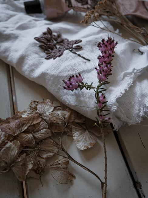 Ususzony wrzos na jasnej tkaninie