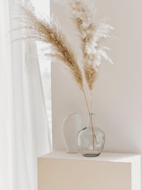 Zbliżenie na trawę pampasową z szklanym wazonie