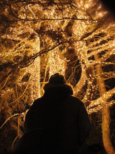 Osoba stojąca przed iliminacją świetlną