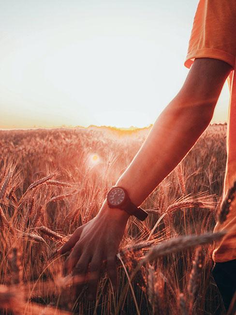 Osoba w polu przy świetle zachodzącego słońca