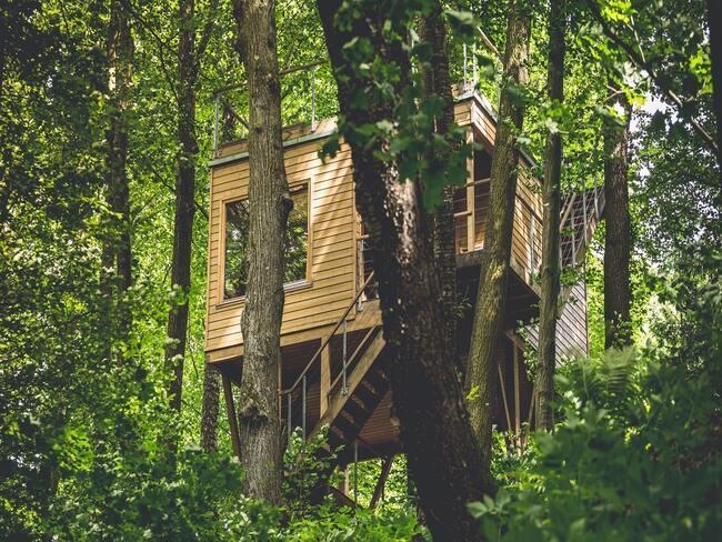 Jeden z apatamentów domki w drzewach