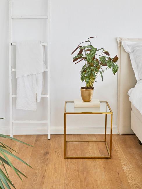 Zbliżenie na matalowy stolik nocny w sypialni z rośliną obok białej półki