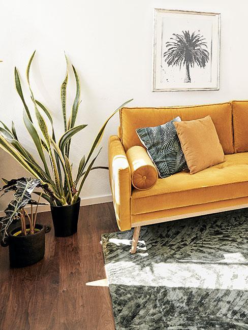 żółta sofa z akasmitu na zielonym dywanie obok roślin doniczkowych