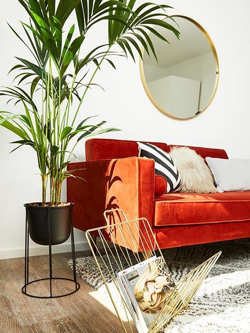 Zbliżenie na czerwoną sofę, biały dywan, lustrem oraz palmą w doniczce