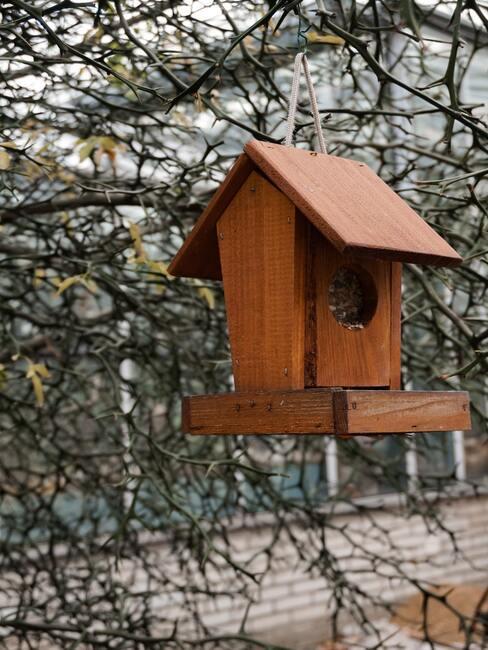 karmnik dla ptaków DIY wykonany z drewna