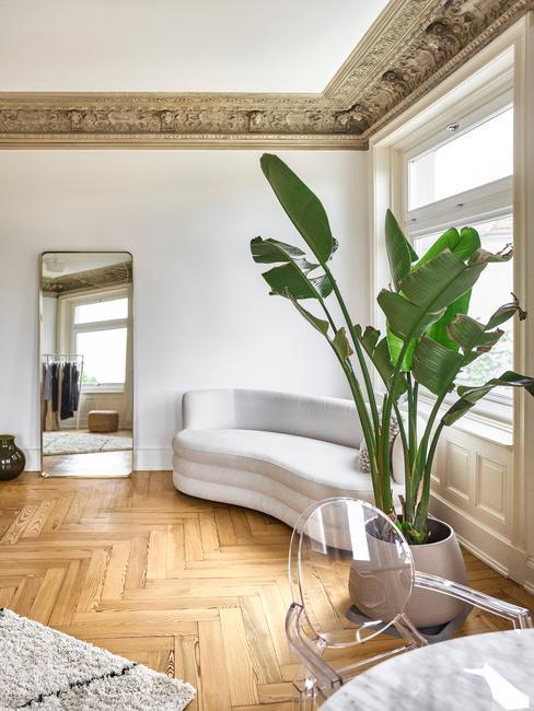Wnętrza salonu z drewnianym parkietem, białą sofą, dużą rośliną doniczkową, wolnostojącym lustrem oraz stukaterią na suficie