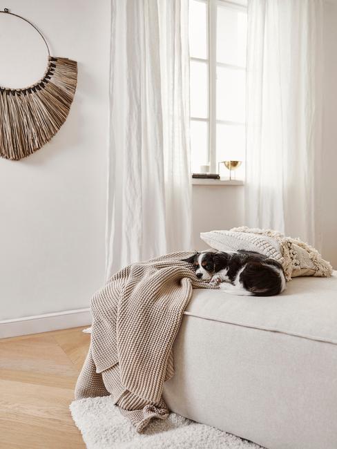 Salon z beżowa sofą z kocem w tym samym kolorze, słomkową dekoracją na ścianie
