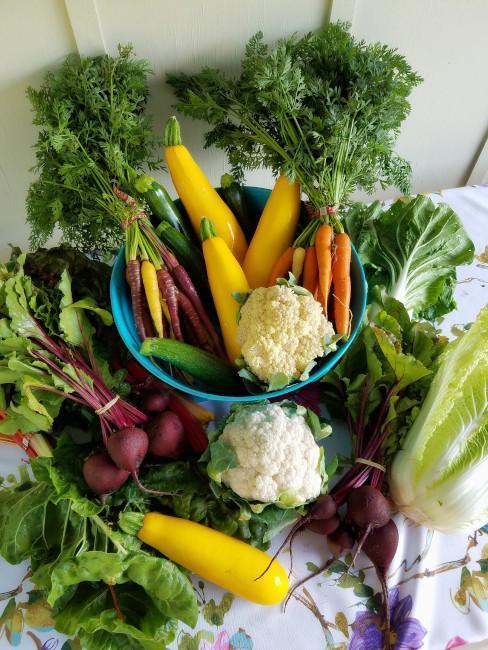 Wiele rodzajów warzyw ułożonych na blacie oraz misce